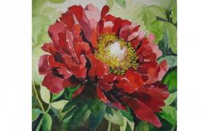 Longwood Garden Single Bloom