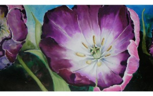 Large Purple Tulip